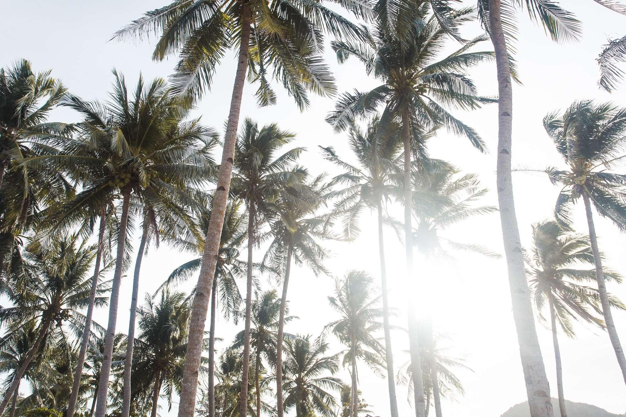 Filipijnen-Web-015
